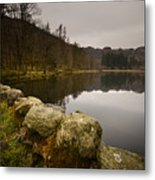 Yew Tree Tarn Metal Print