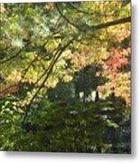 Autumn In Ma Metal Print