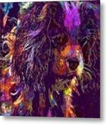 Dog Cavalier King Charles Spaniel  Metal Print