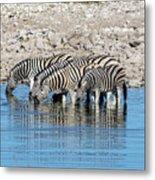 Etosha - Namibia Metal Print