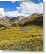 Mount Bierstadt In The Arapahoe National Forest Metal Print