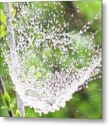10000-spider Web1 Metal Print