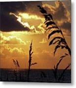 100_0103 Sunrise Metal Print