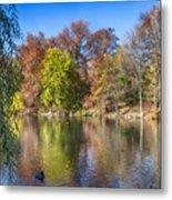 Fall Foliage Metal Print
