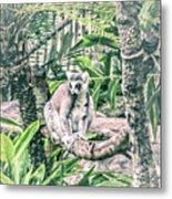 10773 Cotton Topped Tamarin Metal Print