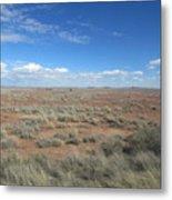 Arizona Landscape Metal Print