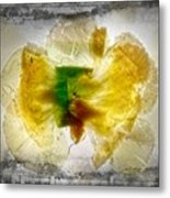 11264 Flower Abstract Series 02 #17 - Carnation Metal Print