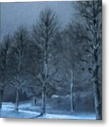 Types Of Landscape Nature Metal Print