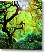 12 Abstract Japanese Maple Tree Metal Print