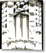 Embellishment Series Metal Print