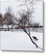 Obear Park In Winter Metal Print