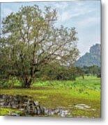Sigiriya - Sri Lanka Metal Print