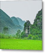 The Beautiful Karst Rural Scenery Metal Print