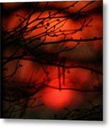 The Sunset Metal Print