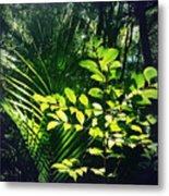 Jungle 123 Metal Print