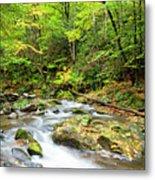 1266 Great Smoky Mountain National Park Metal Print