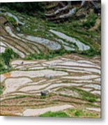 Longji Terraced Fields Scenery Metal Print