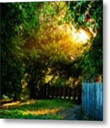 Nature Landscapes Prints Metal Print