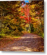 Autumn Season In Killarney Metal Print