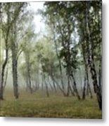 New Landscape Metal Print