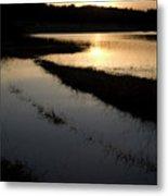 Palsko Lake Metal Print