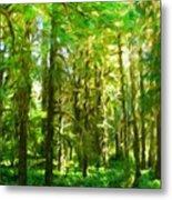 Nature Landscape Illumination Metal Print