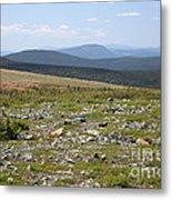 Alpine Tundra Metal Print