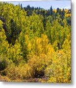 Crystal Creek Autumn Metal Print