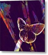 Insect Nature Live  Metal Print