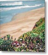 Western Usa Pacific Coast In California Metal Print