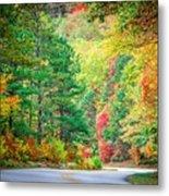 Autumn Season On Blue Ridge Parkway Metal Print