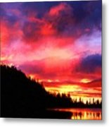 Pictures Nature Metal Print