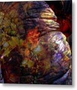 1999 12 12 Metal Print