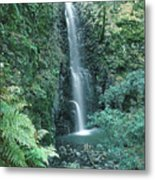 1b6351 Diamond A Waterfall Metal Print