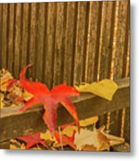 A Foliage Pillow On A Bench In A Woodland Metal Print