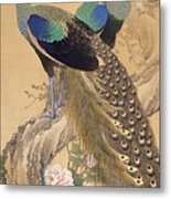 A Pair Of Peacocks In Spring Metal Print