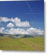Alpine Meadow Metal Print