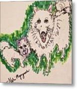 American Eskimo Dog Metal Print