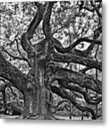 Angel Oak Metal Print