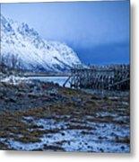 Arctic Reflections Metal Print