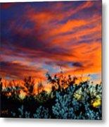 Arizona Sky Metal Print