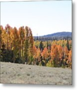 Colorful Aspen Trees Metal Print