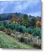 Autumn Colors In The Blue Ridge Mountains Metal Print