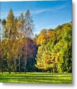 Autumn Colors Of Nature Metal Print