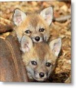 Baby Fox Kits Metal Print