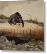 Bear And Canoe Metal Print