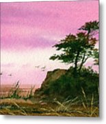 Beautiful Shore Metal Print