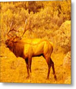 Bull Elk Calling Out Metal Print