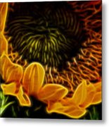 Burning Sun.. Metal Print