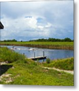 C54 Canal In Florida Metal Print